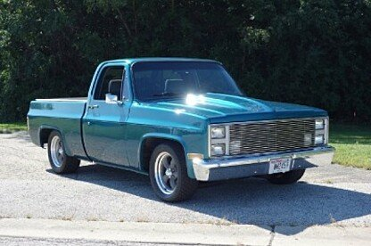 1987 Chevrolet C/K Truck 2WD Regular Cab 1500 for sale 101031066